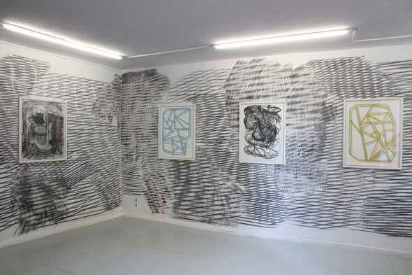 "Christian Schwarzwald - ""Moiré"" exhibition (Installation View) at Raum für Kunst; Photo courtesy of Sophie Weiser"