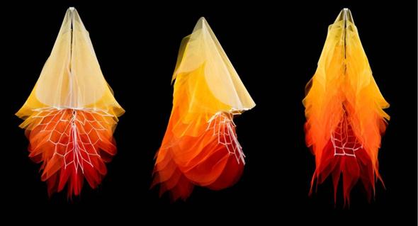 REVOLUTONS Series by Elizabeth Delfs Image Credit: Eva Fernandez