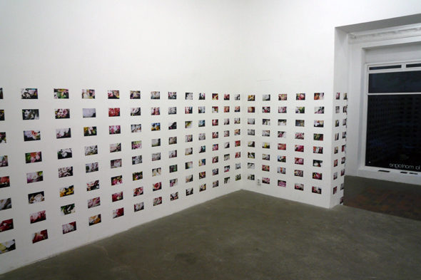 Melissa Fisher, Fifty Fifty, installation view at SlaM