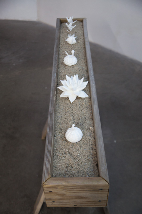 "Exhibition view of ""Leaving the Shade."" ""Solstice"" [sculptures in planter] (2012), mixed media/video installation/SculptCAD 3-D forms, 5 sculptures, 20 x 10cm ea."