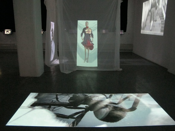 """nstallation shot from """"A Wake,"""" NYC, 2012 including shots of AES+F """"Defiled"""" Series and Polynoid's """"Loom"""" Digital Animation."""