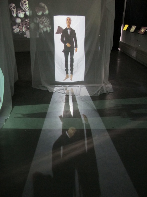 """Installation shot from """"A Wake,"""" NYC, 2012 including shots of AES+F """"Defiled"""" Series and Fiona Pardington's """"We Dream of Gentle Morpheus,"""" Projected Still."""