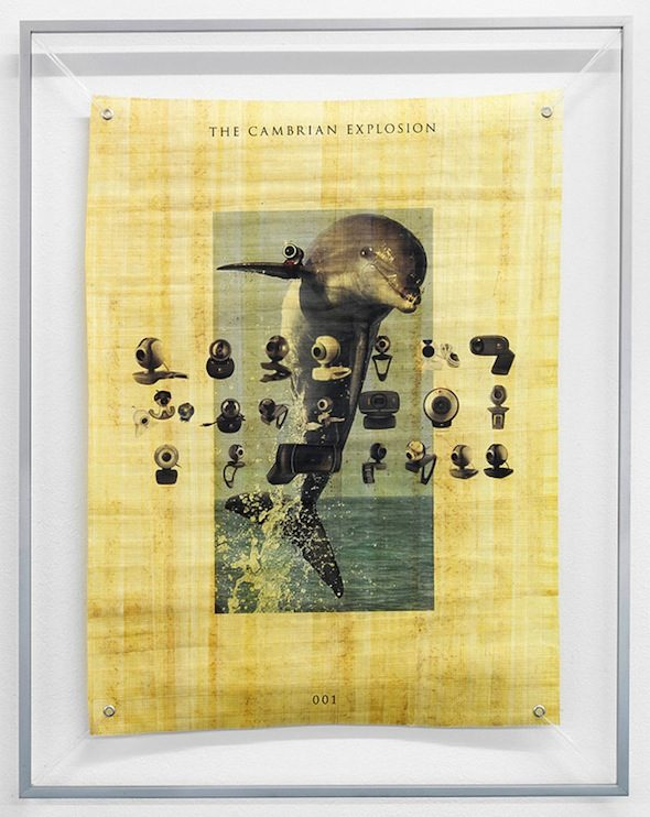 The Cambrian Explosion 001 (2012), Katja Novitskova, Courtesy of Kraupa-Tuskany
