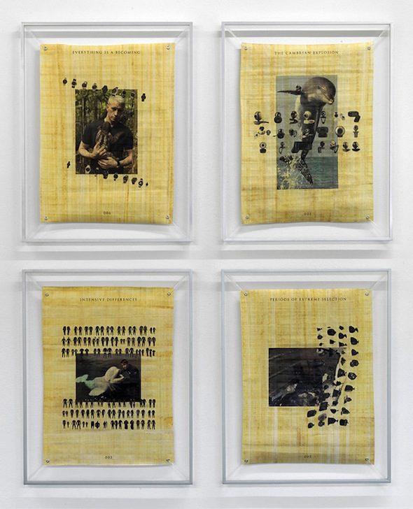 Installation View (2012), Katja Novitskova, Courtesy of Kraupa-Tuskany