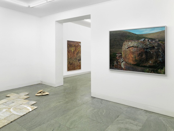 """Nicky Broekhuysen - """"Potency Filled Things"""" (2013), exhibition view at Dittrich & Schlechtriem; photo courtesy of Dittrich & Schlechtriem"""