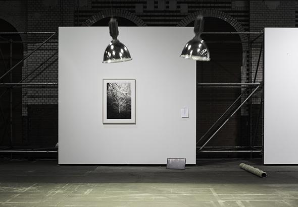 alexander levy booth, presenting works by Julius von Bismarck