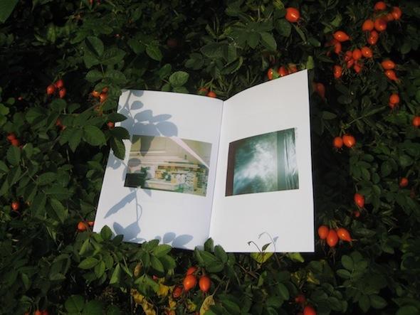 Berlin Art Link Discover Frost Mayne zine