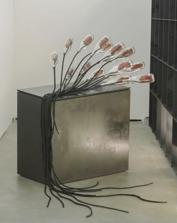 migrants, Cyril De Commarque, sound art, Blain|Souther, Berlin Art Link, Discovery, Exhibition