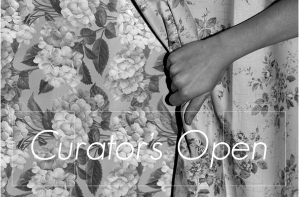 Berlin Art Link Discover Open Call for Curators by ArtSlant