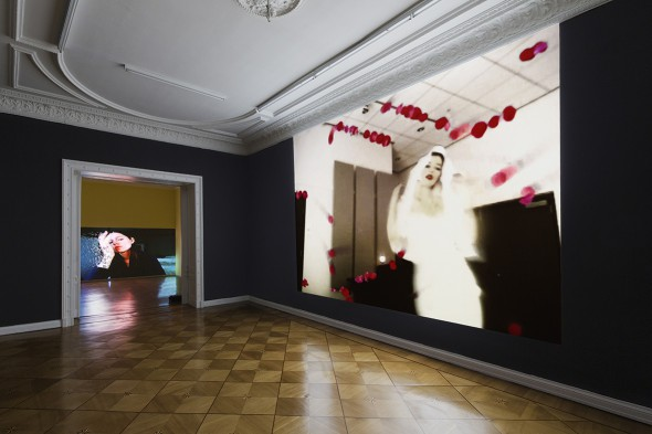 Petra Cortright, Petwelt installation view at Societe Berlin 2014
