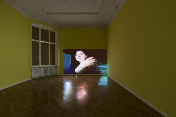 Petra Cortright, Petwelt, at Societe Berlin 2014