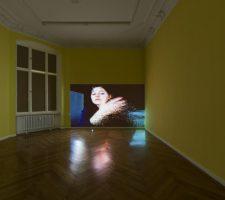Petra Cortright, Petwelt, at Societe Berlin 2014