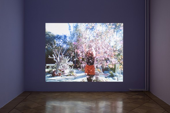 Petra Cortright, Sparkling 1, at Petwelt, Societe Berlin 2014