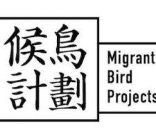 berlinartlink_migrantbirds