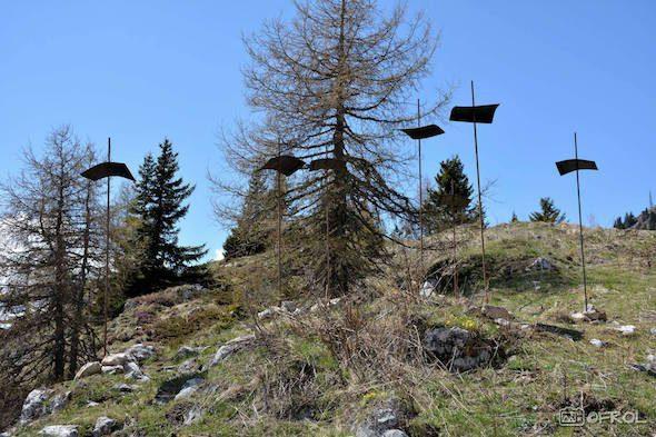 Stefan Soravia, 'Eisenblumenwald', rubber and iron, 2016, courtesy of Biennale Arte Dolomiti