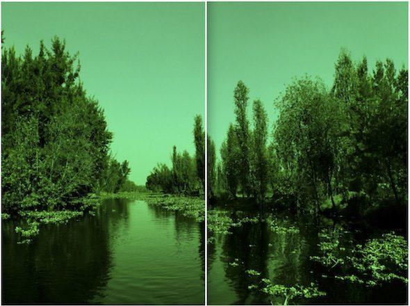 berlinartlink-naturecultures