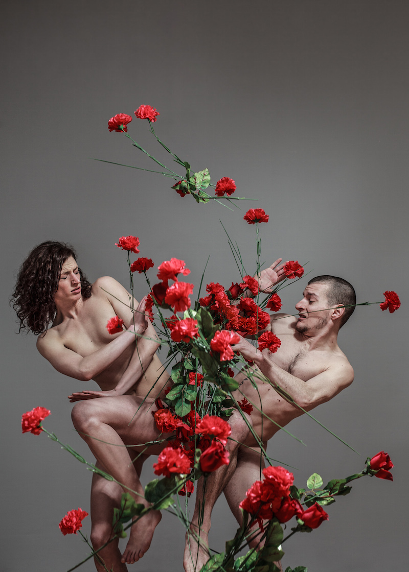 Berlin Art Link Discover Hungarian Contemporary Dance Festival