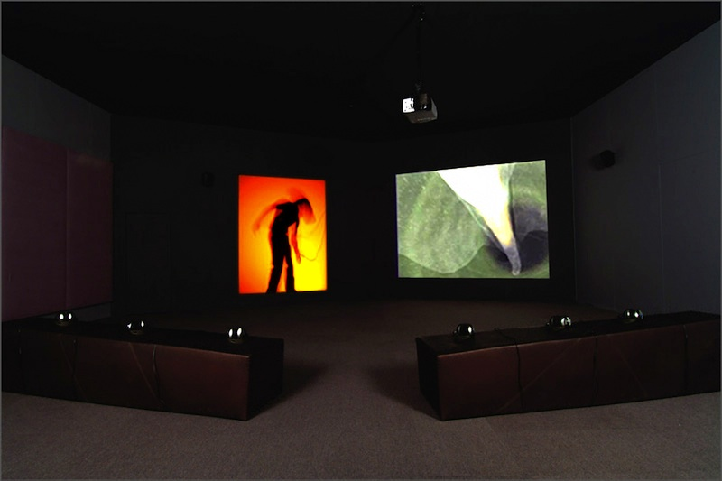 berlinartlink-virtualreality-chardavies