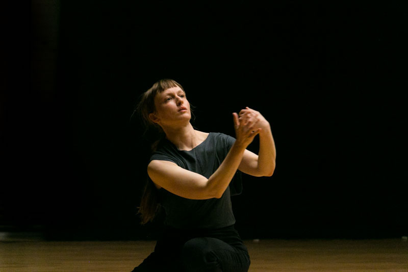 Berlin-Art-Link-The-Instrument-Sandra-Camey-6