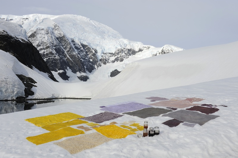 berlinartlink-venicebiennale-antarcticpavilion