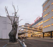 Berlin Art Link Discover Art Rotterdam