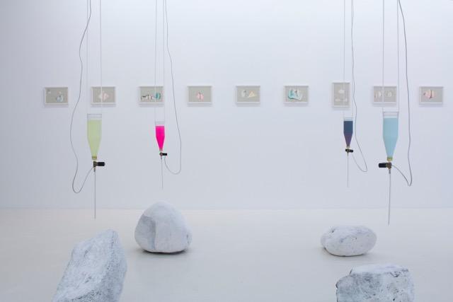 Anna Rún Tryggvadottir: 'Garður/Garden' (installation view), 2017. Courtesy of the artist.