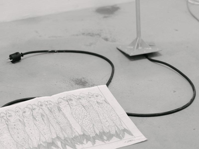 Studio visit with Klara Hobza | Berlin Art Link