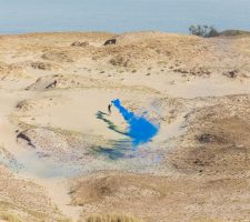 Berlin Art Link Open Call for Nida Art Colony