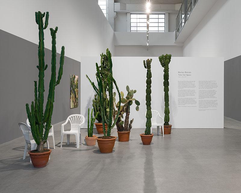 Berlin Art Link Review of Marcius Bercea at Blain Southern