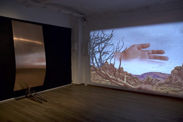 Installation view: Anders Ehlin, Protey Temen. Part II, Aperto Raum, Berlin, 2019 // Photo Credits Aperto Raum
