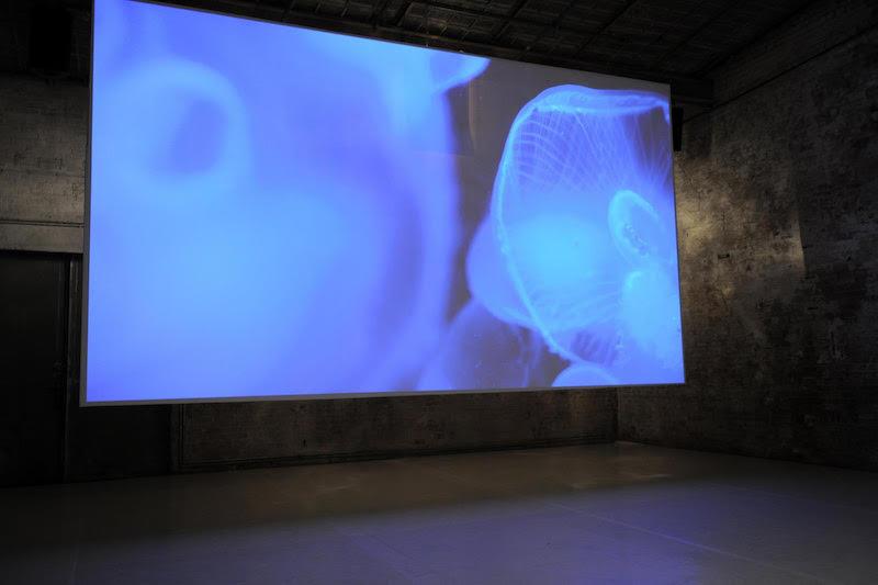 Berlin Art Link Open Call