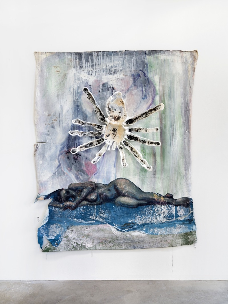 Berlin Art Link Review of Raphaela Vogel's 'Vogelspinne'