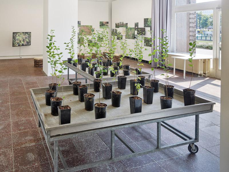 Berlin Art Link Exhibition Review