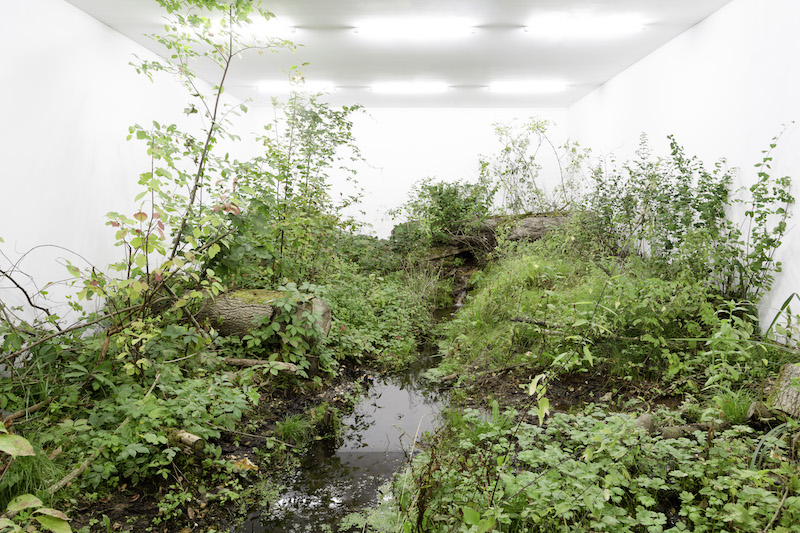 The Great Indoors: Fabian Knecht's 'ISOLATION'   Berlin Art Link