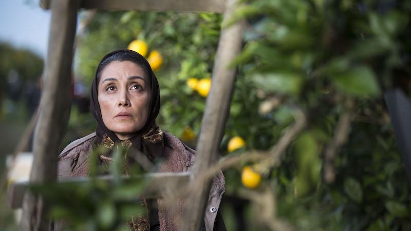 berlinartlink discover iranian films