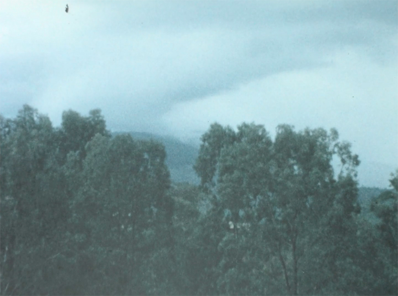 Berlin Art Link interview with Sandra Heremans. A film still of a cloudy landscape from archival footage.