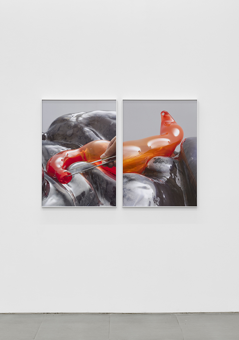 installation view of photographic diptych that appears to be a still from a surgical procedure