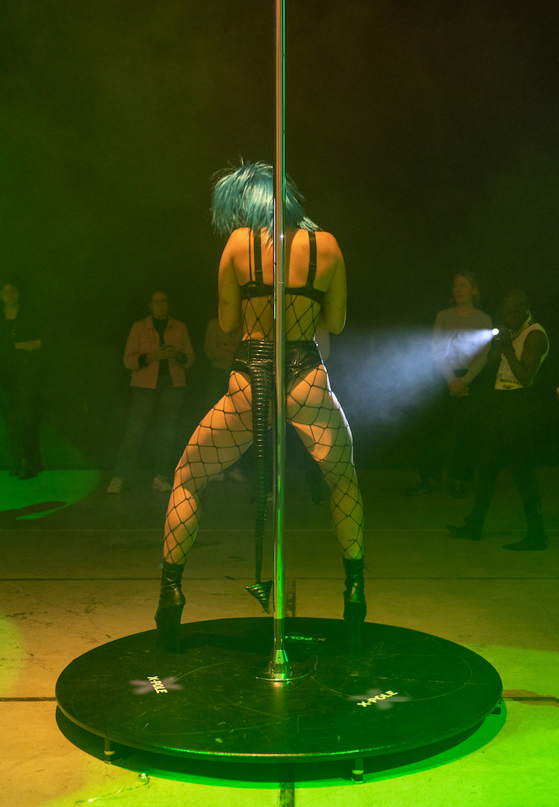 A person wearing black lingerie, fishnet stockings and a blue wig and long black tail, stands with their back to the camera, leaning against a pole as 4 or 5 other people look on from the background, one of them flashing a camera light on the performer