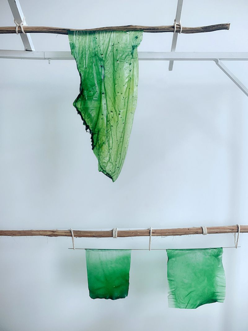 A green piece of algae-based bioplastic hangs from a stick attahced to a white metal frame. Below this large piece hang two additional pieces of similarly colored algae-based bioplastic. They also hang from a stick attached to the same metal frame.