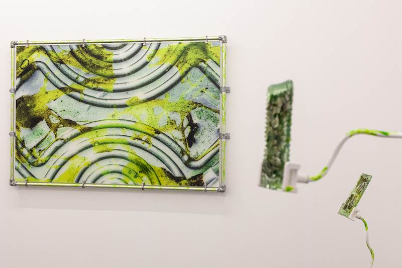 a framed photograph of a sickly green substance on an abstract, ridged metal surface. another artwork in the same color juts out from the wall next to the photograph