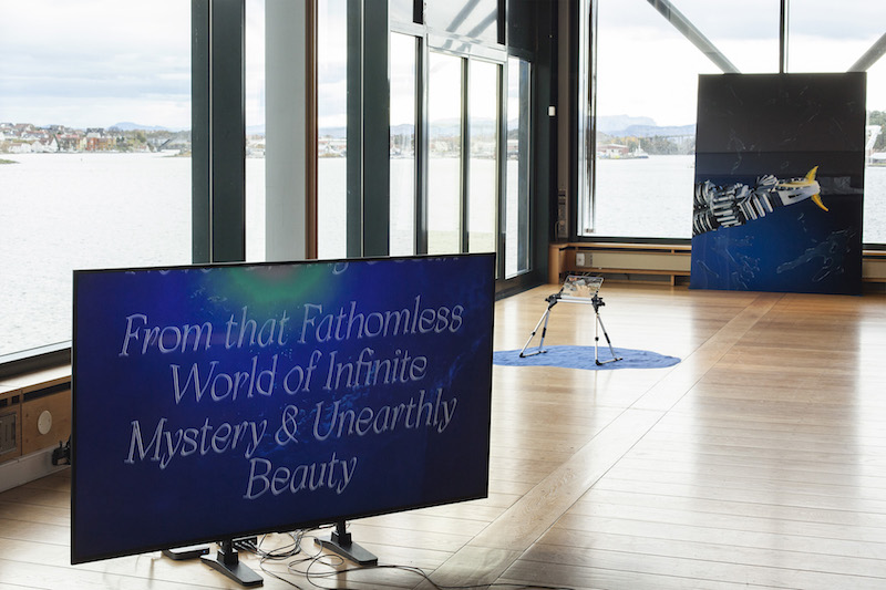 installation of a video in a gallery space, in front of a wall of bright windows, the video screen reads: from that fathomless world of infinite mystery and unearthly beauty