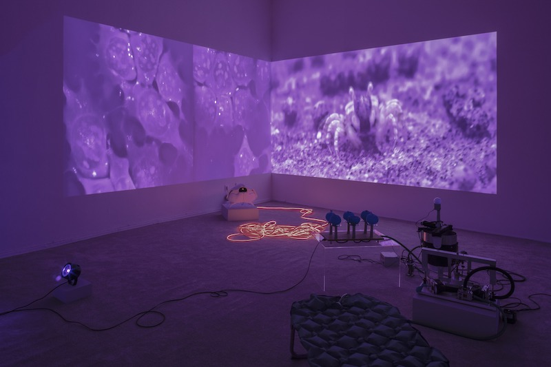 A purple hued room with a projection on the wall surrounded by sculptural components.