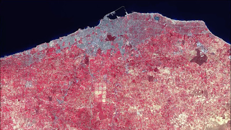 An overhead view of a coastline that is pink.