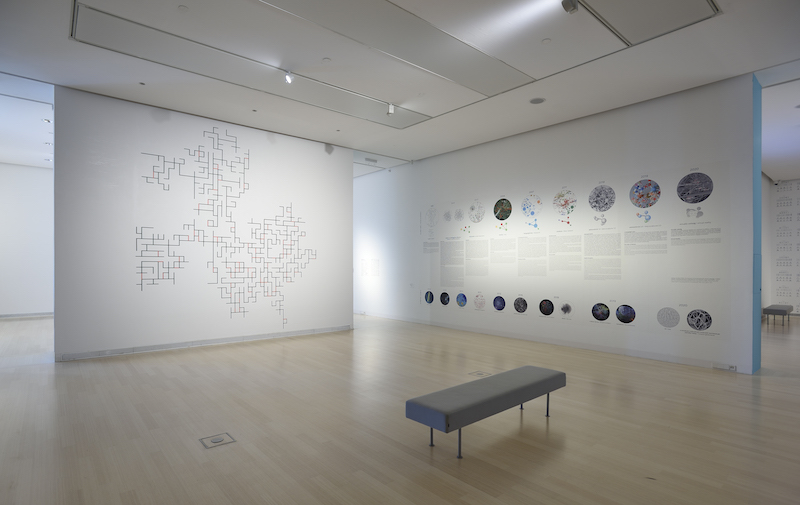a photo of a brightly lit exhibition space with white walls and a gray bench in the center, on the walls are several colourful data visualizations by the barabasi lab
