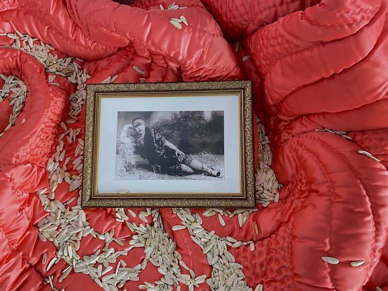 a red blanket is covered in sunflower seeds, and atop it sits a framed black and white photograph of a reclining woman, dressed in a flapper-style outfit