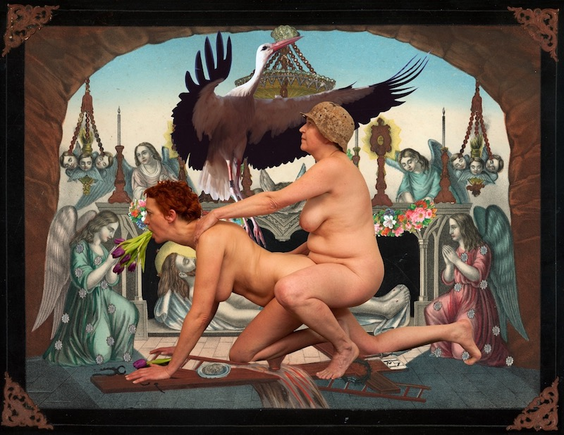an image of two naked people in a sexual position, with a stork flying above them