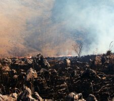 a field of burnt ground with a dark smoke cloud in the background